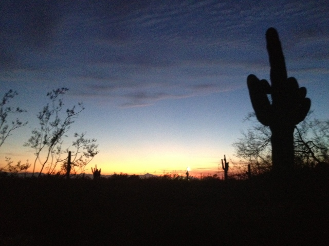 Phoenix night sky