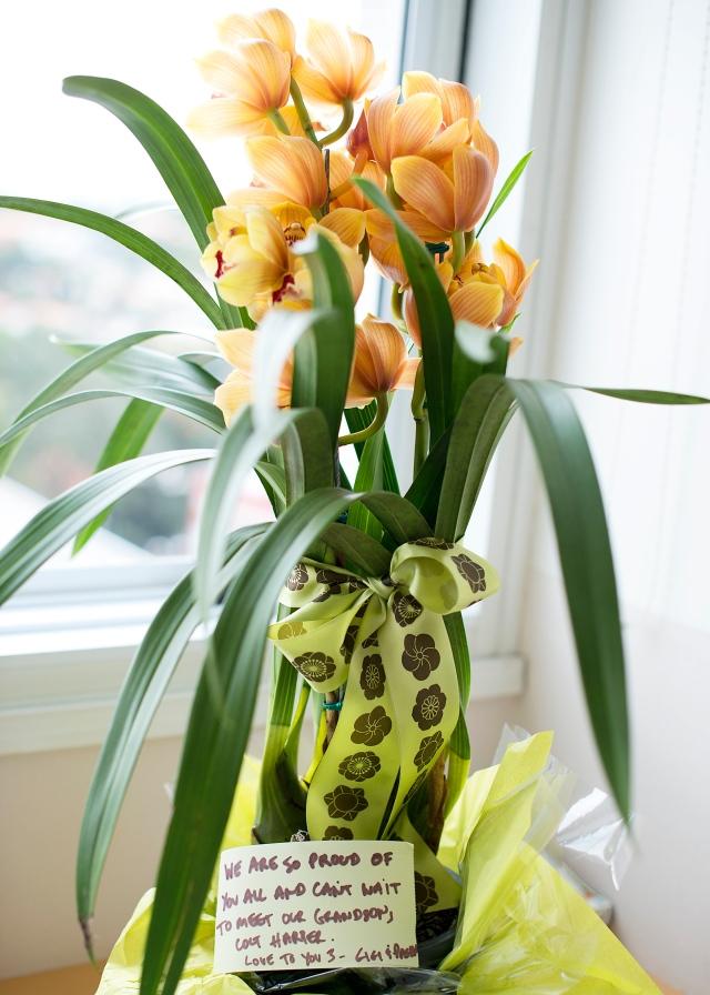 Beautiful flowers sent from Gigi Zais!