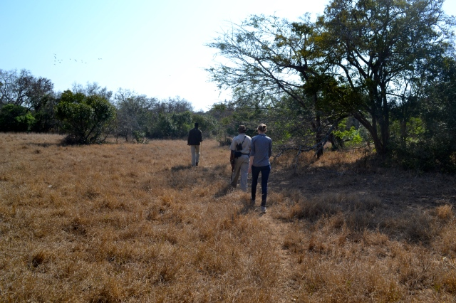 Sticking close to our ranger and tracker as we tracked rhinos on foot.