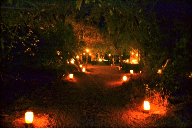 Arriving at our dinner in the bush.