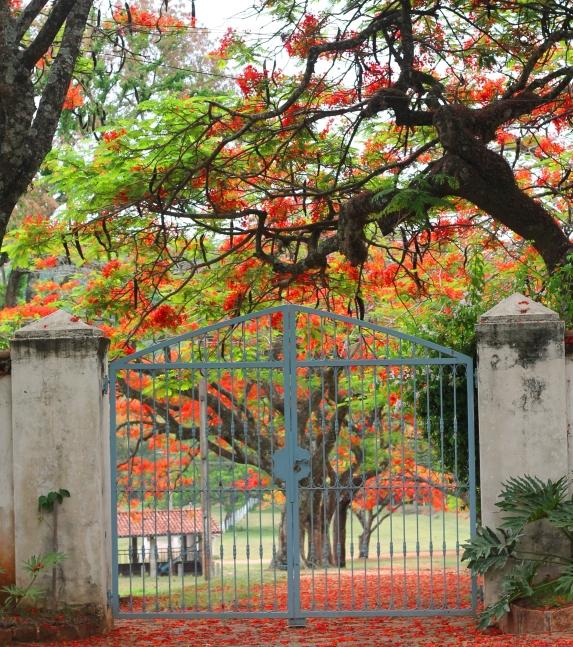 Entry gate.