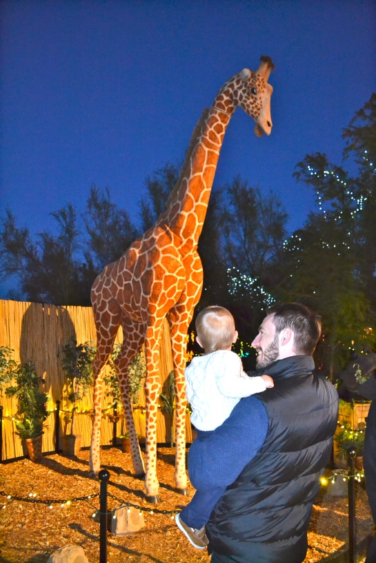 Colt was mesmerized by the talking giraffe.