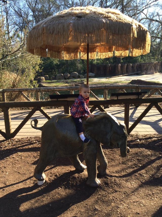 Riding the elephant.