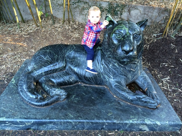 Riding the tiger.
