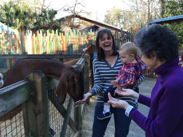 My mom and Colt actually got sneezed on by one of the goats mid-feed. It reminded me of when Colt sneezes on me right when I give him a spoonful of food.